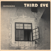 THIRD_EYE_FT_WILTON_GAYNAIR_Connexion